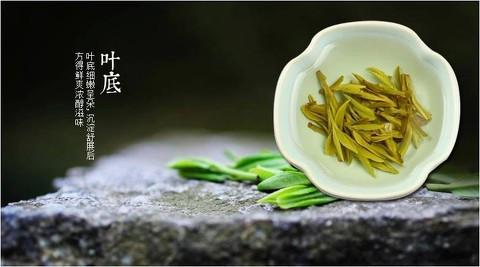 Xi Hu Long Jing Tea West Lake Gragon Well Tea